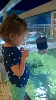 Visite d'aquarium...