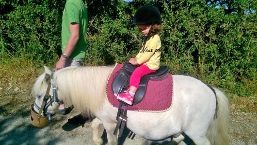 A dos de poney...