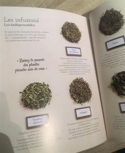 infusions indispensables végétale thérapie