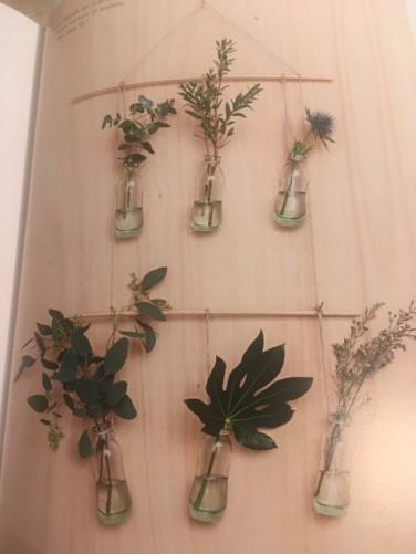 plantes suspendues végétale thérapie