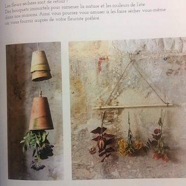 suspensions fleurs séchées végétale thérapie